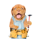 Funny Puppy Worker  Tool Belt  Holds Hammer    Wall Sticker