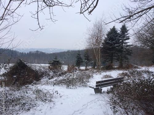 Foto op Canvas Grijs Bank am Waldrand im Schnee