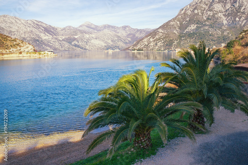 Fotobehang Blauwe hemel Beautiful Mediterranean landscape. Montenegro, view of Bay of Kotor ( Adriatic Sea ) on sunny winter day