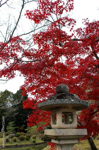 Aluminium Rood paars 根来寺の紅葉