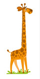 Funny Smiling Giraffe Wall Sticker