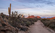 Sunset road to no where in the Arizona Desert near Scottsdale, AZ.