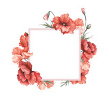 Frame with poppies. Hand draw watercolor illustration. - 194747806