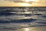 Beach scene with man swimming in the ocean at sunrise - 194748219