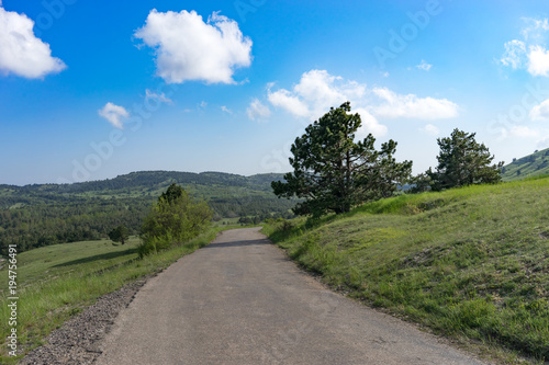 Foto op Canvas Natuur Natural landscape with green field overgrown with grass under the sky with clouds and road.