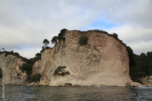 Foto Spatwand Cathedral Cove Famous Cathedral Cove area in Coromandel in New Zealand