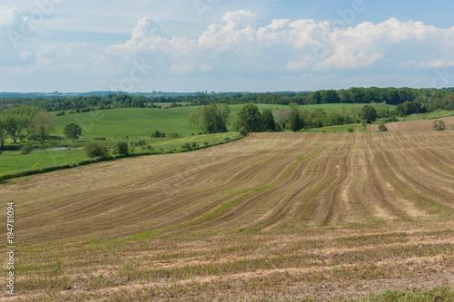 Foto op Plexiglas Canada Rural landscape of field in countryside