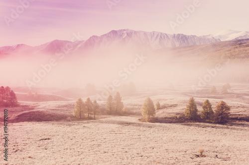 Mgła w dolinie górskiej. Ranek mgła nad jeziorem w Altai górach.