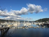 Friday Harbor Marina docks