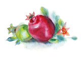 Watercolor painting. Green and red pomegranates with flower and leaves on white background. - 194812637