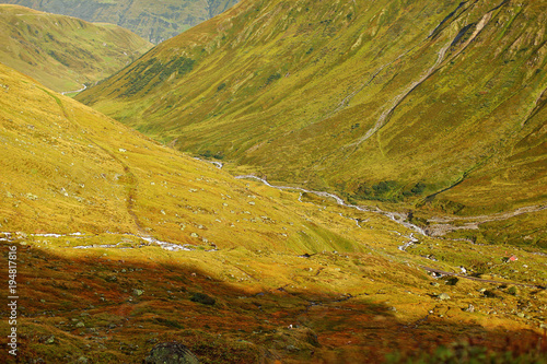 Fotobehang Honing view of mountain roads and forests from above, unusual natural texture, Switzerland