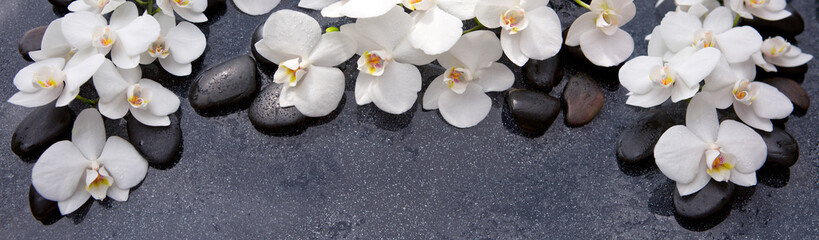 Spa background with white orchid and black stones. © Swetlana Wall