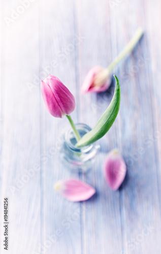 Różowe tulipany w szklanych butelkach