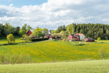Spring in the countryside of Småland in Sweden - 194876275