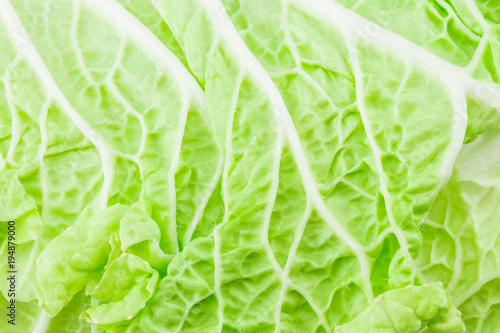 Cabbage detail with leaves texture. With clipping path - 194879000