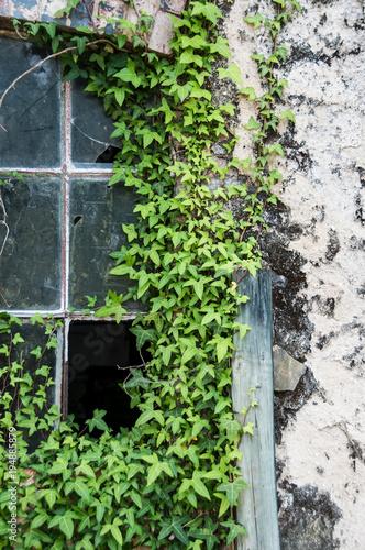 Staande foto Oude verlaten gebouwen Fábrica em ruínas e abandonada