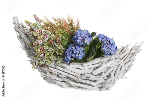 Fotobehang Hydrangea Flower arrangement in a basket in the form of a boat isolated on white background.