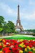 Flowers and Eiffel tower