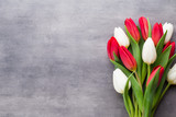 Multicolored spring flowers, tulip on a gray background. - 194901659