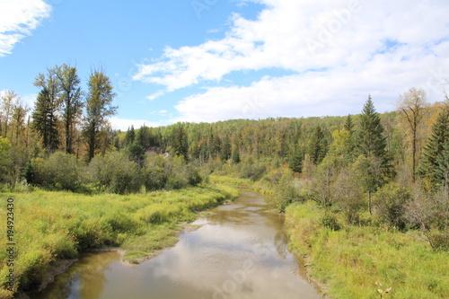 Fotobehang Pistache Late Summer On The Creek, Whitemud Park, Edmonton, Alberta