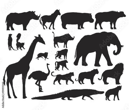 Wall mural Animals Illustration Art Set