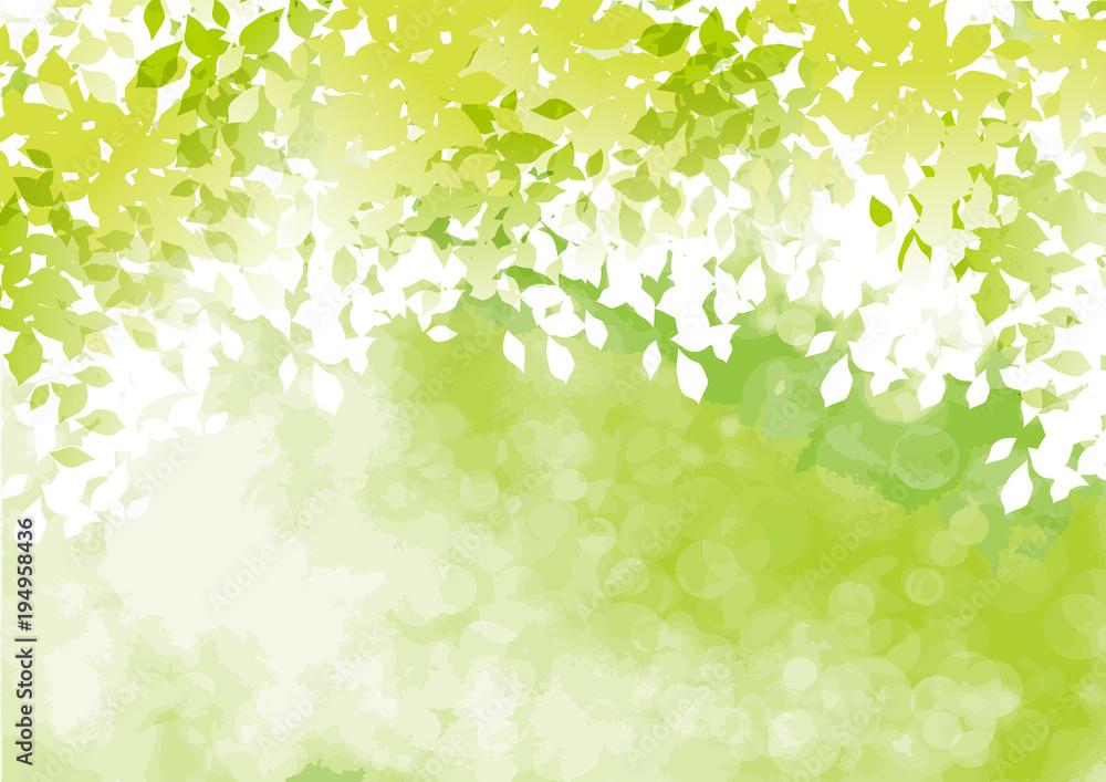 フレッシュ緑 二
