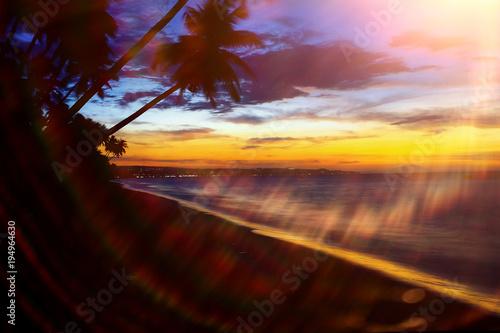 Staande foto Bruin Beach in the tropics