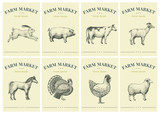 Labels with farm animals. Set templates price tags for shops and markets of organic food. Vector retro illustration art. Hand drawn animals. - 194965036