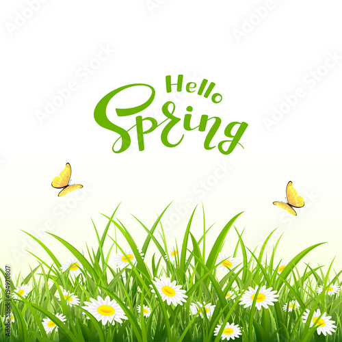 Lettering Hello Spring and natural background with butterfly and flowers - 194970807