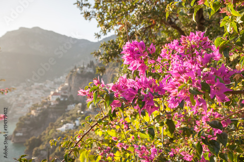 Fotobehang Donkergrijs Blooming flowers