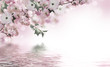 Flowers background with amazing spring sakura with butterflies. Flowers of cherries. - 194981060
