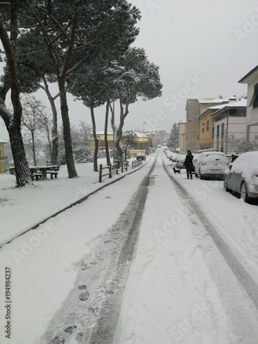 Nevicata in paese