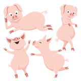 Set of cute pigs on white background.