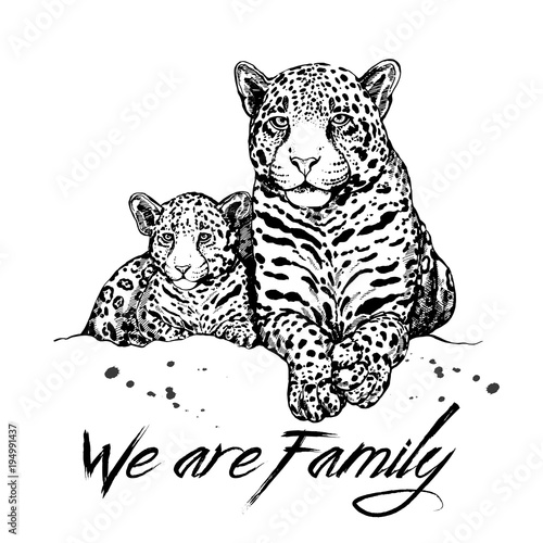Fototapeta Hand drawn sketch style leopard mother with cub. Vector illustration isolated on white background.