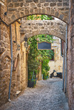 Narrow stone alley with green plants at old Rhodes city