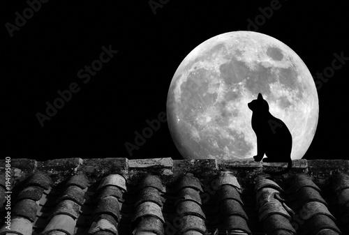 Gato, luna llena y tejado, silueta, fondo negro