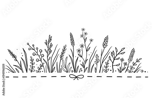 background with hand drawn herbs and flowers