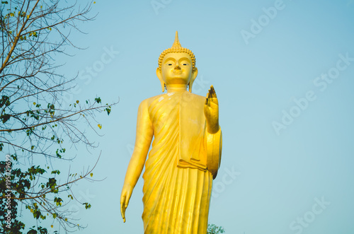 Foto op Aluminium Boeddha Golden Buddha stand isolated on blue sky background and side branch . copy space for text.