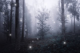 surreal forest with magical sparkles floating in the fog