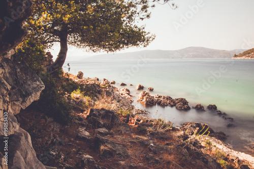 Foto op Plexiglas Zalm Landscape