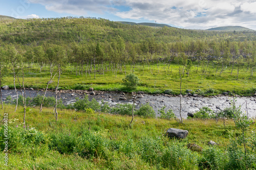 Fotobehang Pistache The characteristic landscape of the Arctic tundra in summer, Norway