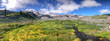 Panoramic view of Mt Rainier landscape on a beautiful summer day