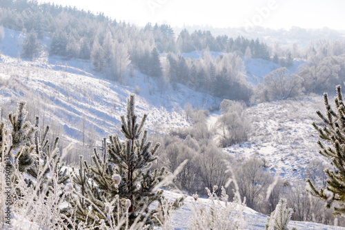 Aluminium Donkergrijs Rural winter landscape with white frost in the ravine