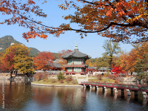 Foto op Canvas Seoel Korean traditional architecture Gyeongbokgung Palace Hyangwonjeong at colorful autumn leaves in Seoul, Korea