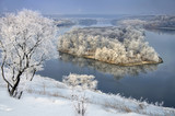 Frozen tree on winter landscape - 195114042