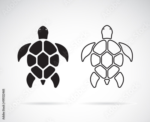 Vector of turtle design on a white background. Reptile. Animals. Easy editable layered vector illustration.
