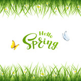 Text Hello Spring with butterflies and grass - 195125424