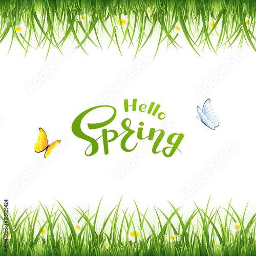 Fototapeta Text Hello Spring with butterflies and grass