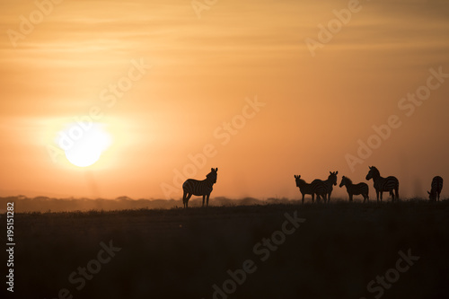 Foto op Canvas Zwart African landscape while in safari