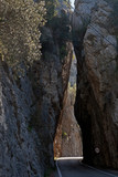 Palma de mallorca Gorge - 195161446